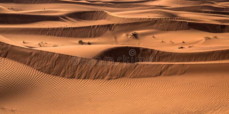 Wüstensonnenuntergangbelichtung nahe Dubai, Vereinigte Arabische Emirate lizenzfreies stockbild