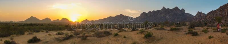 Wüstenszenenpanorama stockbild
