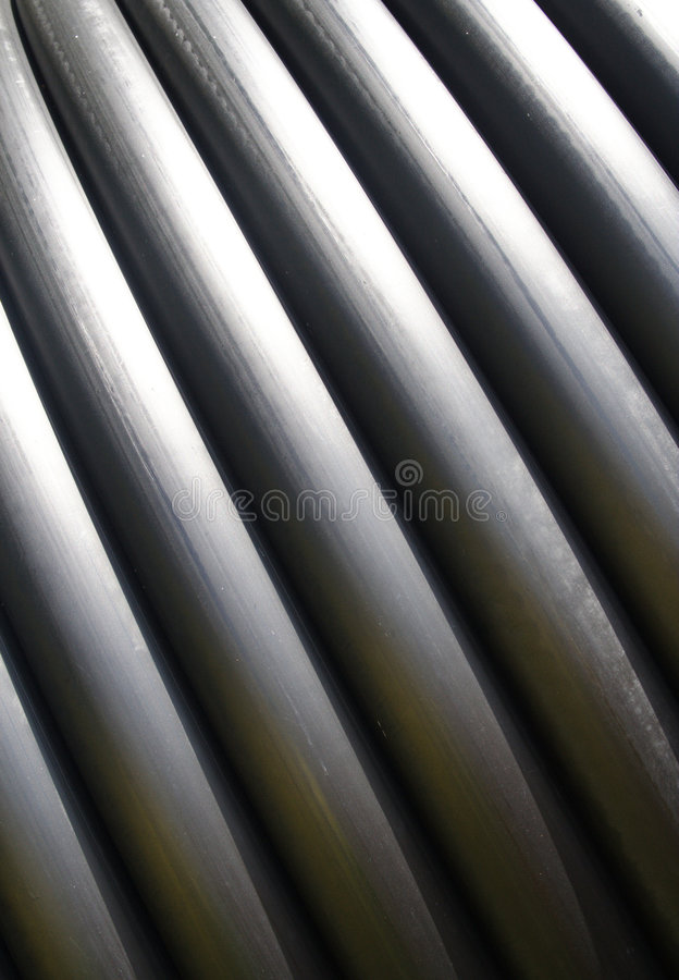 wąż. fotografia stock