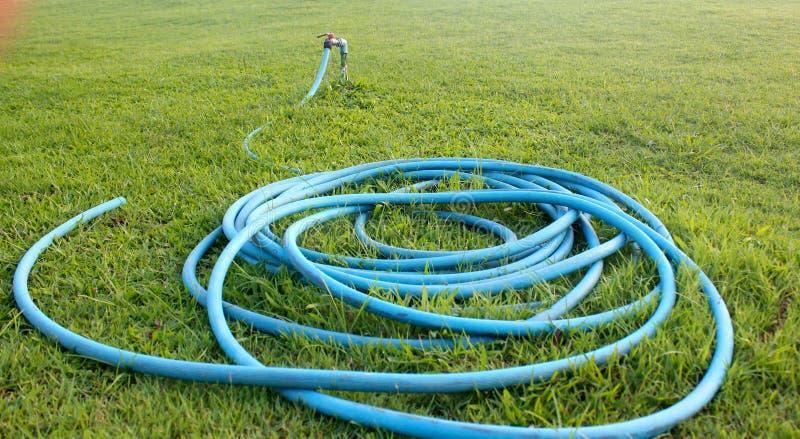Wąż elastyczny ustawiający na ogródzie obrazy royalty free