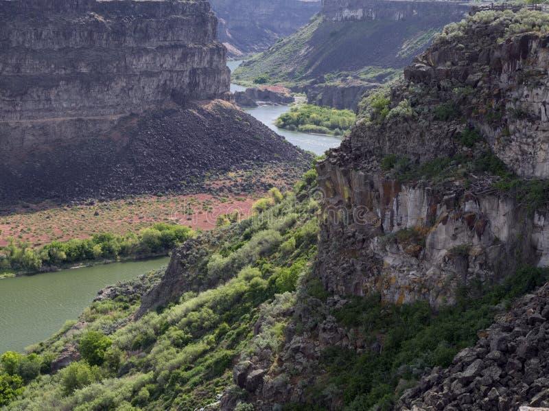 Wąż rzeki jar zdjęcia stock