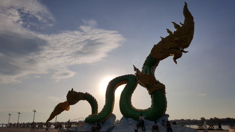 Wąż w Nongkhai, Tajlandia fotografia stock