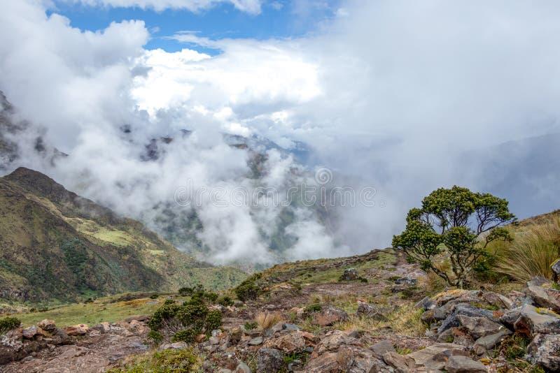 Wąska ścieżka na wycieczkuje śladzie przy dużych wysokości Peruwiańskimi górami między Maizal i Yanama, Peru fotografia stock
