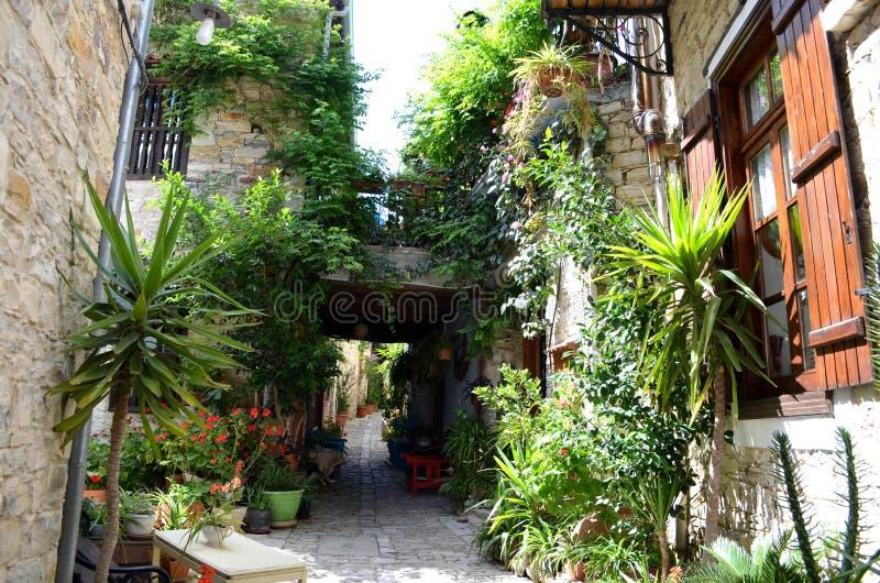 Wąska grka Cypr ulica - kamieni domy z ładunkami zielone rośliny zdjęcie royalty free