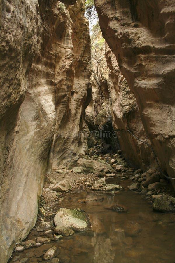 Wąski skalisty przejście Avakas wąwóz przy Cypr zdjęcie royalty free