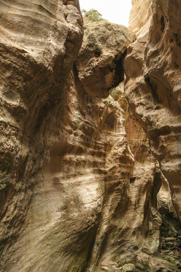 Wąski skalisty przejście Avakas wąwóz przy Cypr zdjęcia royalty free
