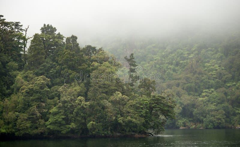Wątpliwy dźwięk, Południowa wyspa, Nowa Zelandia fotografia stock