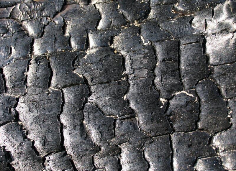 węgiel drzewny konsystencja fotografia royalty free