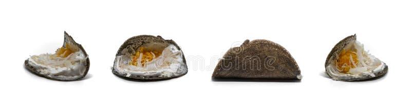 Węgiel drzewny krepy Buang w Tajlandzkim lub Khan, deser jako crispy bliny na białym tle obrazy stock