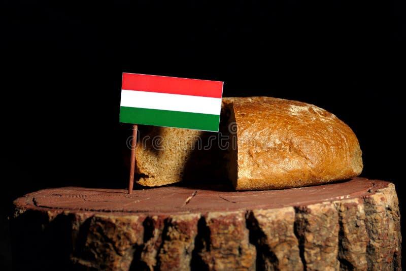 Węgier flaga na fiszorku z chlebem fotografia royalty free