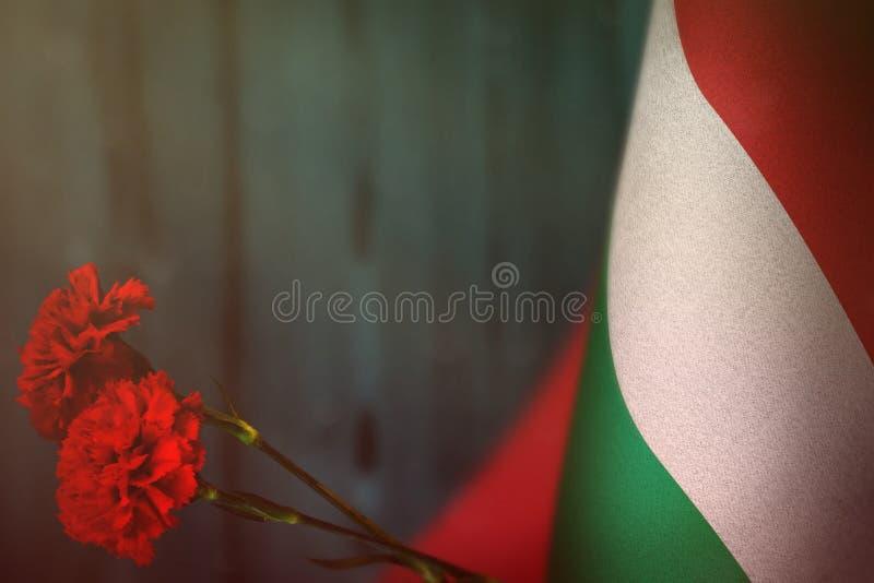 Węgry flaga dla zaszczyta weterana dzień pamięci z dwa czerwień goździka kwiatami lub dzień Chlubi się Węgry bohaterzy wojenny po obraz stock