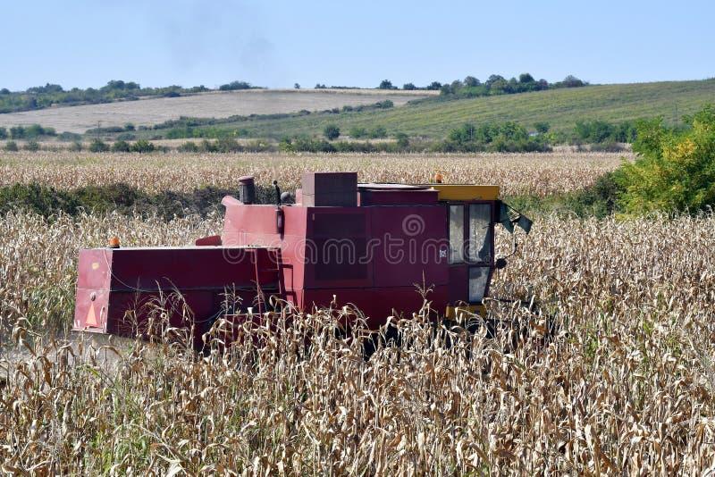 Węgry, Rolnictwo, Zbiór obraz stock