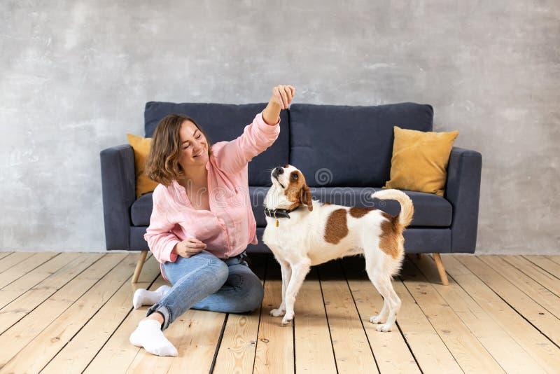 Właściciel i jego pies sztuka w domu fotografia royalty free