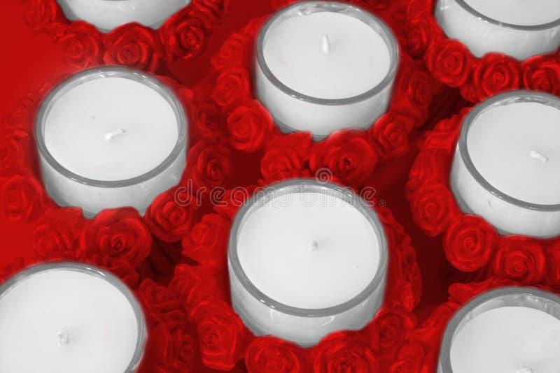 właściciele wzrosły candle zdjęcie royalty free