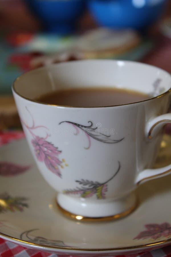 Właściwa filiżanka herbata zdjęcie royalty free