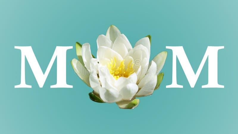 Władza mama kwiat ilustracja wektor