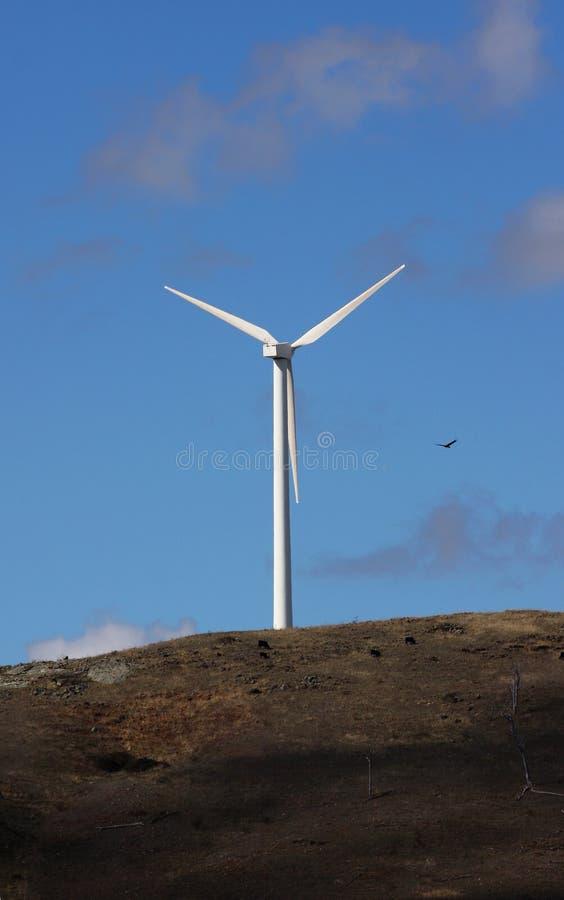 władza wiatr obrazy stock