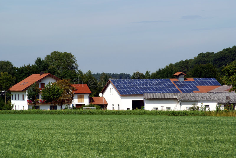 władze rolnej roślin słoneczna zdjęcia royalty free