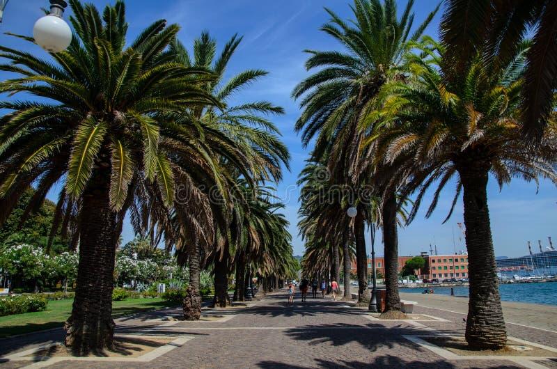 Włochy natura zdjęcie royalty free