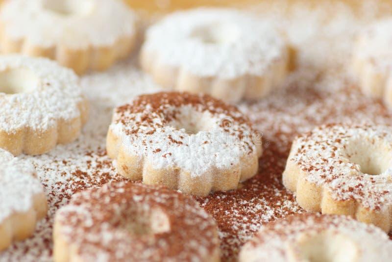 Włoscy canestrelli ciastka z sproszkowanym cukierem i kakaową władzą obraz royalty free