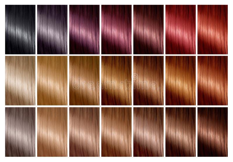 Włosiana kolor paleta z pasmem swatches odcienie Kolor mapa zdjęcie royalty free