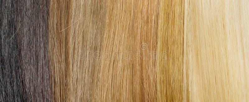 Włosiana rozszerzenie paleta z kolor próbkami od blondynki czernić fotografia stock