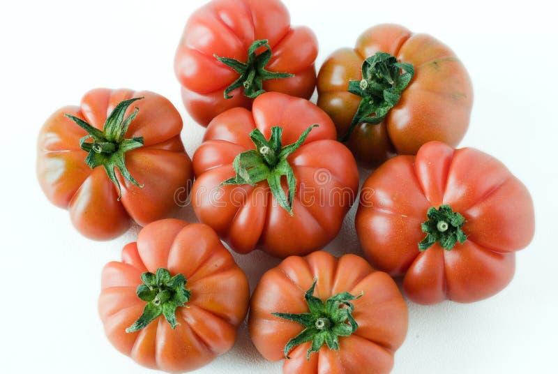 włoski dojrzałe pomidory obraz stock