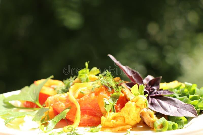 Włoski gnocchi z pieczarkami i pomidorowym kumberlandem obraz royalty free