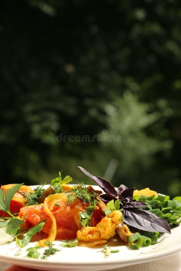 Włoski gnocchi z pieczarkami i pomidorowym kumberlandem fotografia stock