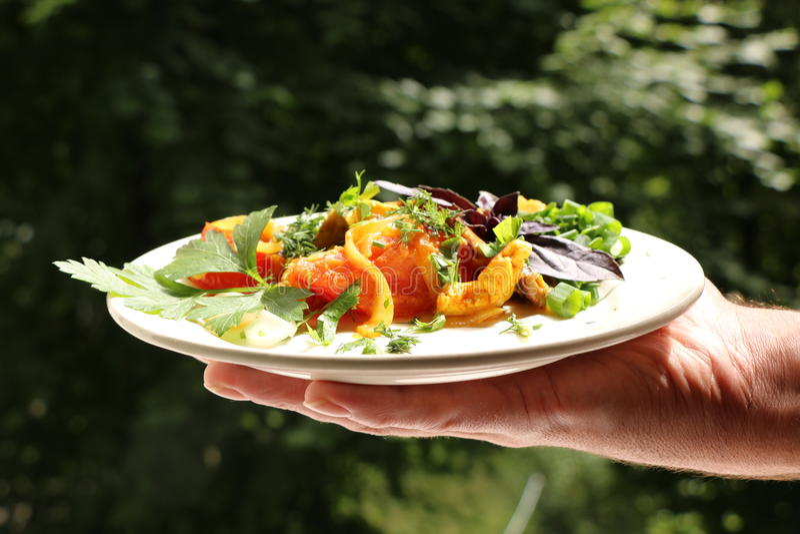 Włoski gnocchi z pieczarkami i pomidorowym kumberlandem obrazy stock