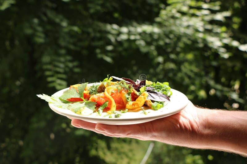 Włoski gnocchi z pieczarkami i pomidorowym kumberlandem zdjęcia stock