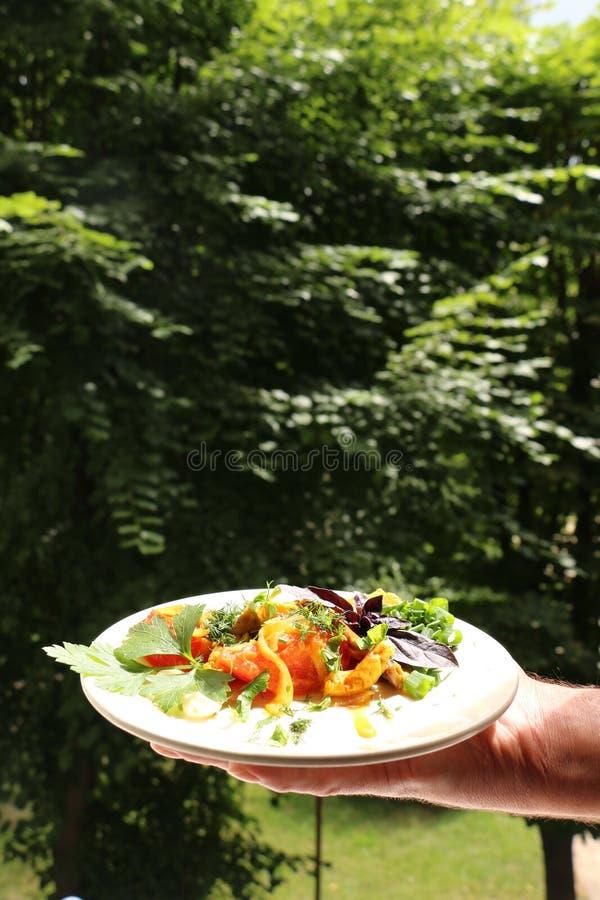 Włoski gnocchi z pieczarkami i pomidorowym kumberlandem zdjęcia royalty free