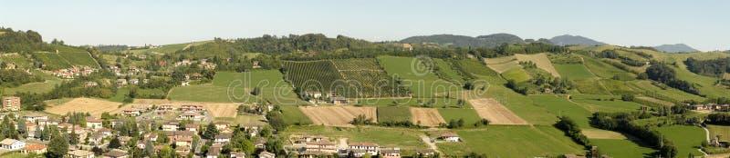 włoskie winnice obraz stock