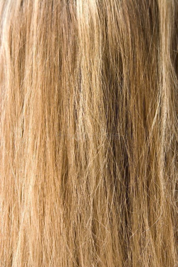 włosy zdjęcia stock