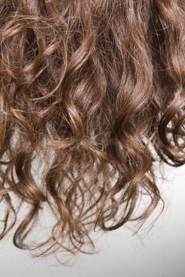 włosy kędzierzawy włosy obraz royalty free