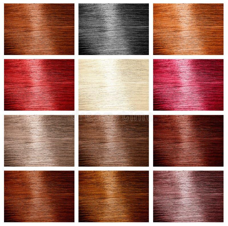 Włosy kolor ustawiająca próbka obrazy royalty free