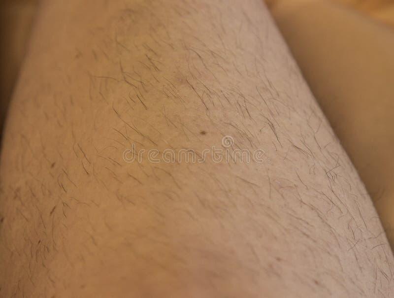 Włosy na kobiet nogach - wiecznie problem obraz stock