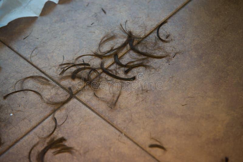 Włosy na podłoga w fryzjerze obrazy stock