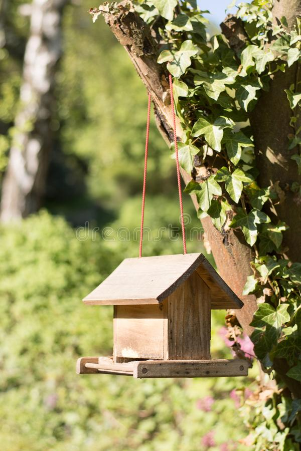 W Śniegu Birdhouse fotografia royalty free