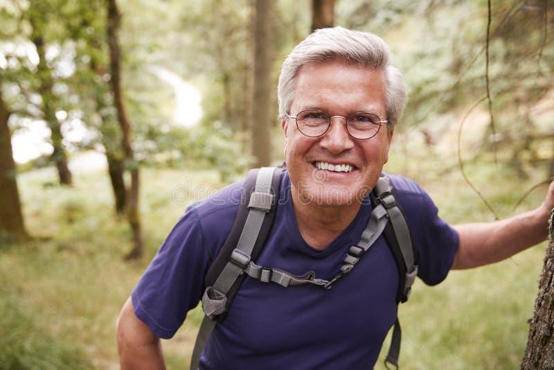 W średnim wieku Kaukaski mężczyzna bierze przerwę opiera na drzewie podczas podwyżki w lesie, ono uśmiecha się kamera, zakończeni obrazy stock