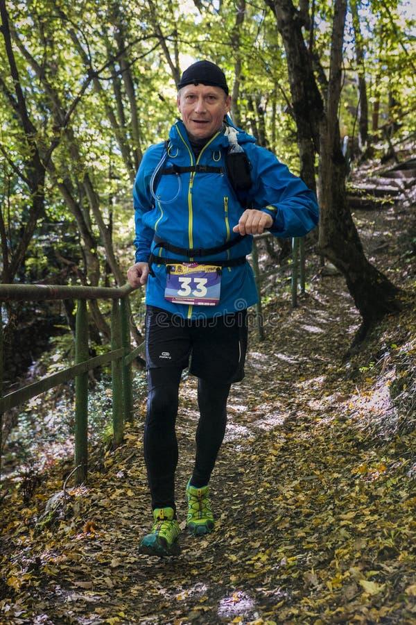 W średnim wieku mężczyzna bieg wzdłuż lasowej ścieżki zdjęcia stock