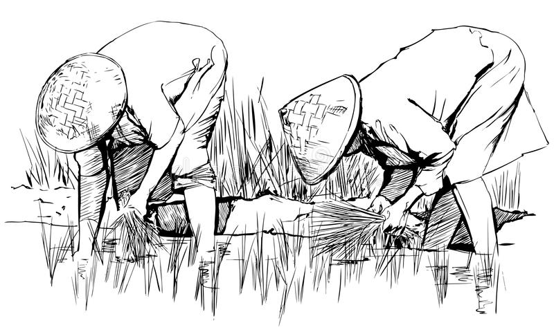 W Asia TARGET533_0_ ryż ilustracja wektor