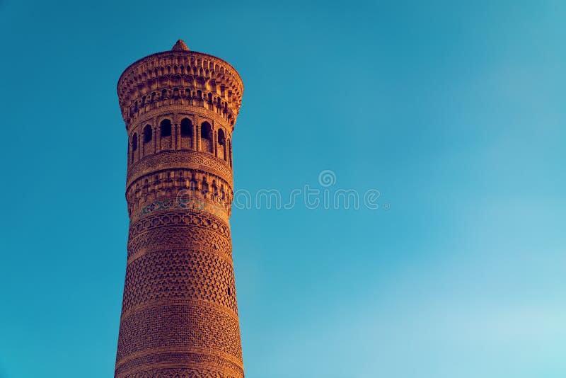 W Bukhara Kalyan minaret zdjęcie stock
