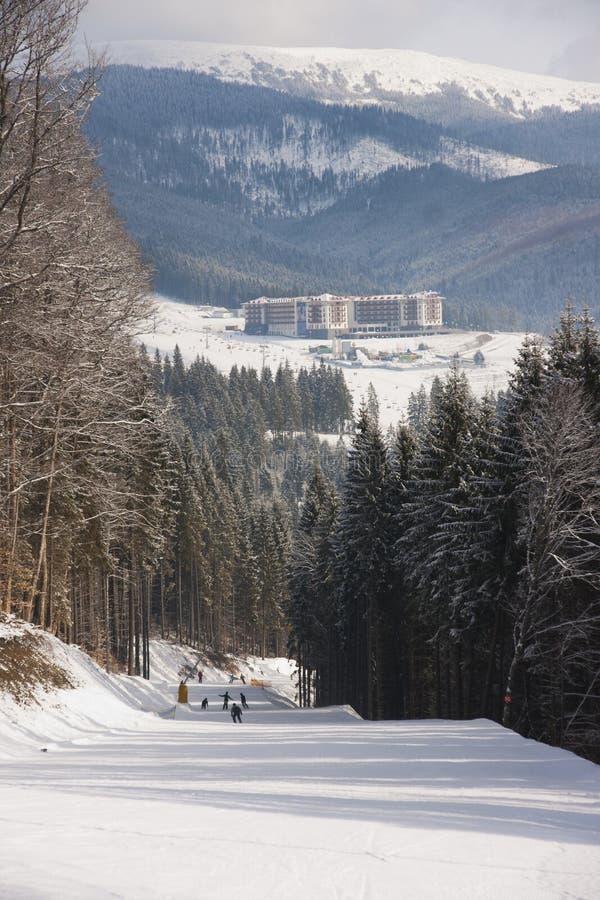 W Carpathians na Bukovelya fotografia royalty free