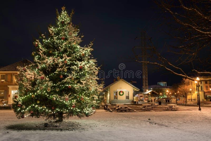 W centrum Herndon Virginia na Śnieżnej nocy zdjęcie royalty free