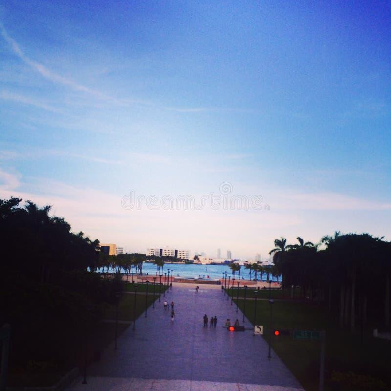 W centrum Miami Bayfront park fotografia stock