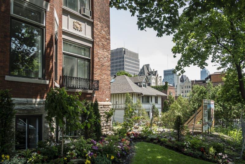 W centrum Montreal ulicy widok fotografia royalty free