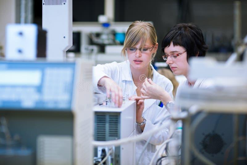 W chemii lab żeńscy badacze obrazy royalty free