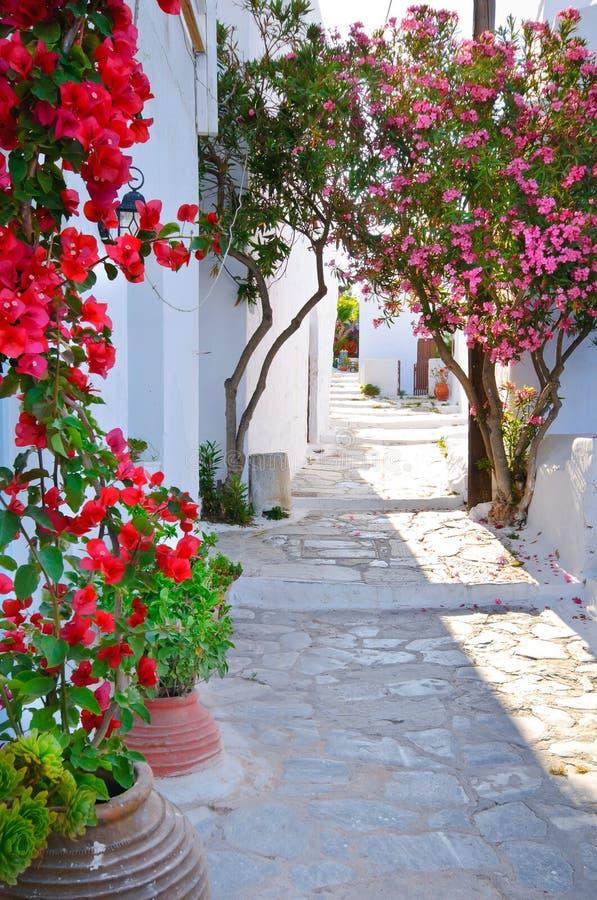W Cyclades Wyspach tradycyjny grecki backstreet, fotografia royalty free