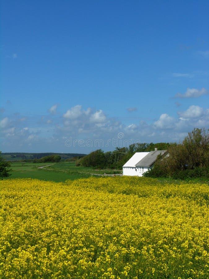 Download W domu stary rolnych zdjęcie stock. Obraz złożonej z danish - 135888